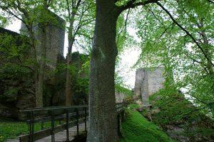 Замок Хоустник